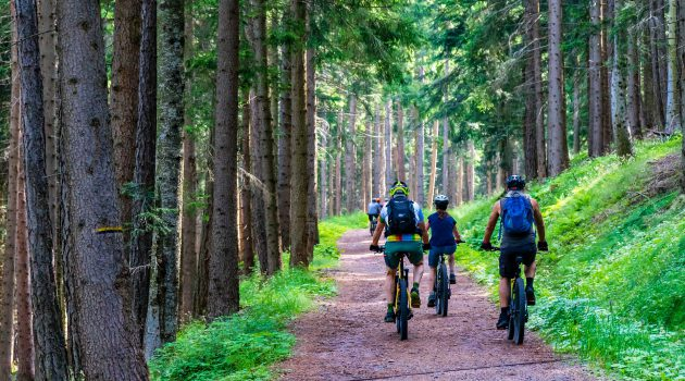 Mountainbike fahren in der Gruppe ist sehr gesellig
